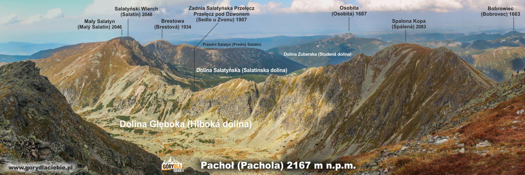 Widok ze szczytu Pachoła (2167 m) na otoczenie Głębokiej Doliny, Spaloną Kopę (2083 m), Szczyty Salatyna (2048 i 2046 m) i Brestową (1934 m)