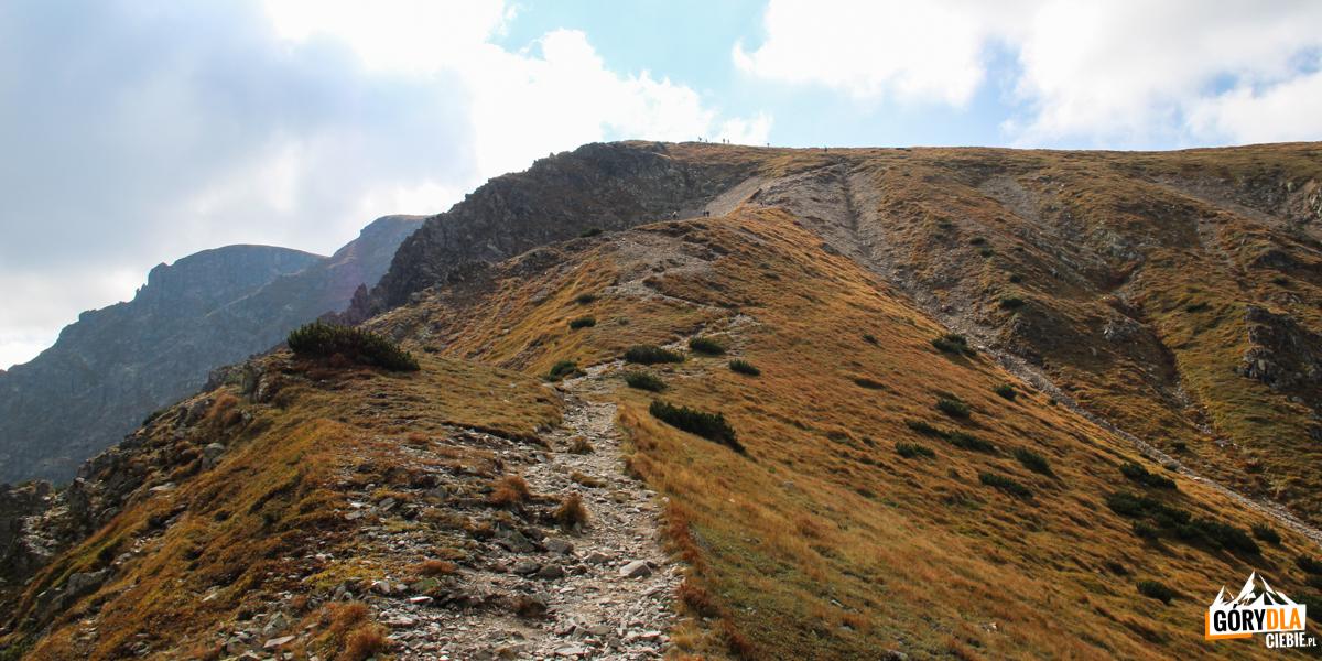 Podejscie na Salatyn (2048 m) z Przełęczy Salatyńskiej (1870 m)