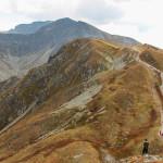 Mały Salatyn (2046 m), a za nim Spalona Kopa (2083 m), Pachoł (2167 m) i całą grań Rohaczy.