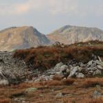Szczyty Salatyna (2048 i 2046 m) widziane ze Spalonej Kopy (2083 m)