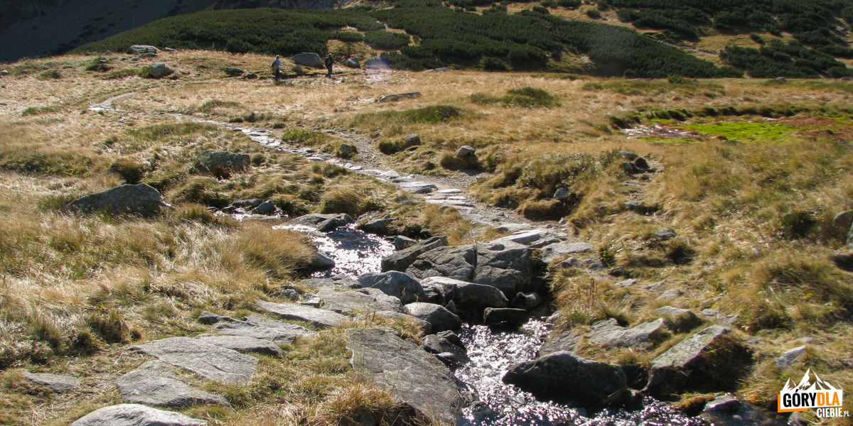 Ścieżka na Szpiglasową Przełęcz