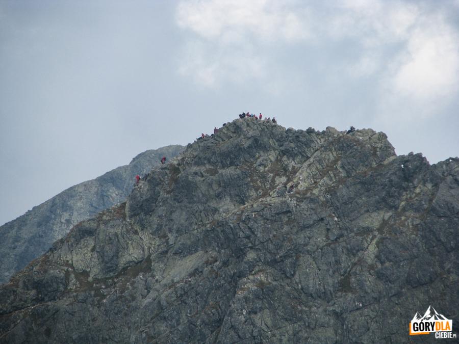 Szczyt Kościelca (2156 m) widziany ze Świnicy (2301 m)