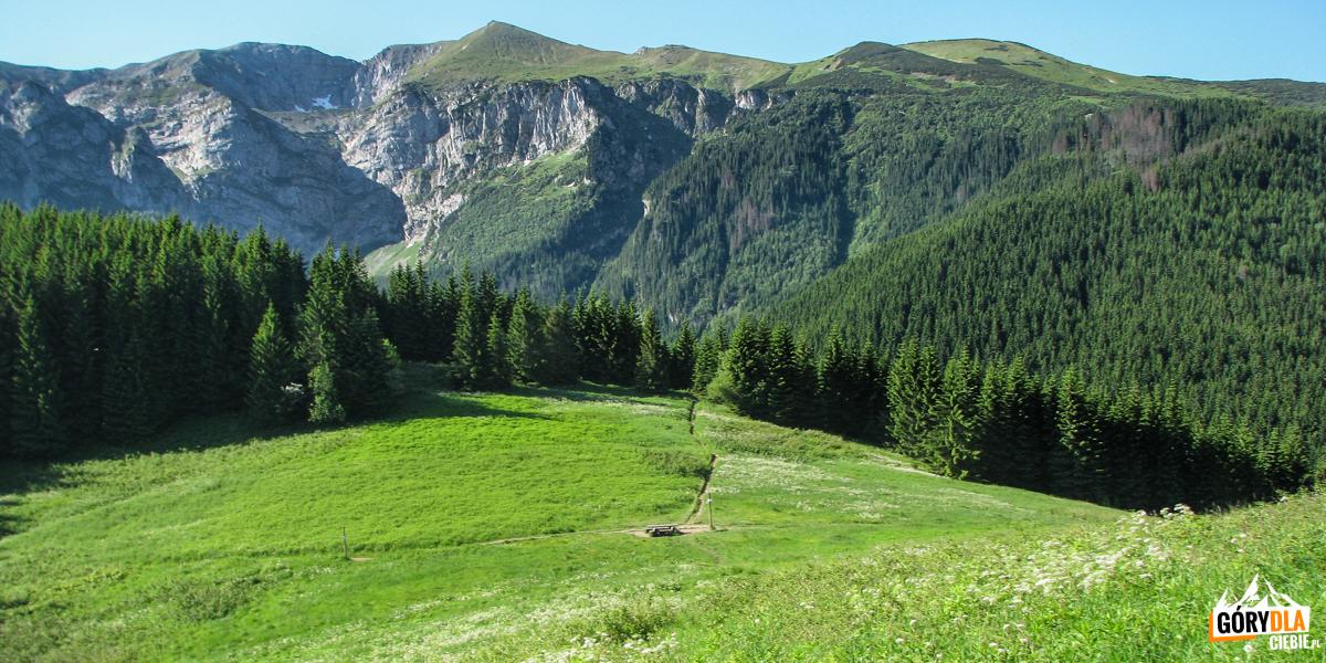 Przysłop Miętusi (1187 m) na tle grani Ciemniaka