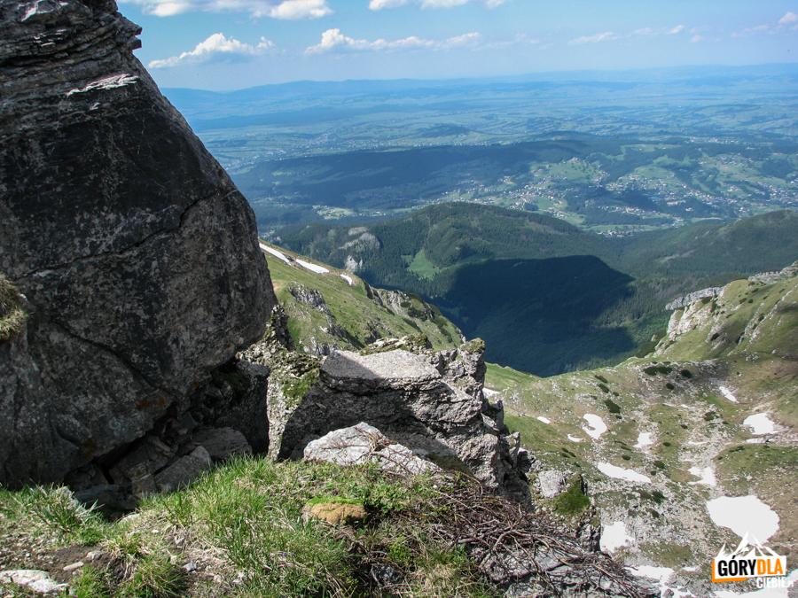Dolinka Mułowa, pod nią Dolina Miętusia