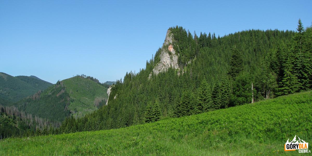 Zawiesista Turnia (1296 m) nad Przysłopem Miętusim (1187 m)