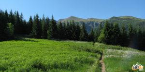 Niebieski szlak na Małołączniak z Przysłopu Miętusiego (1187 m)