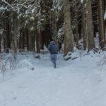 Biegacz na szlaku w Dolinie Małej Łąki