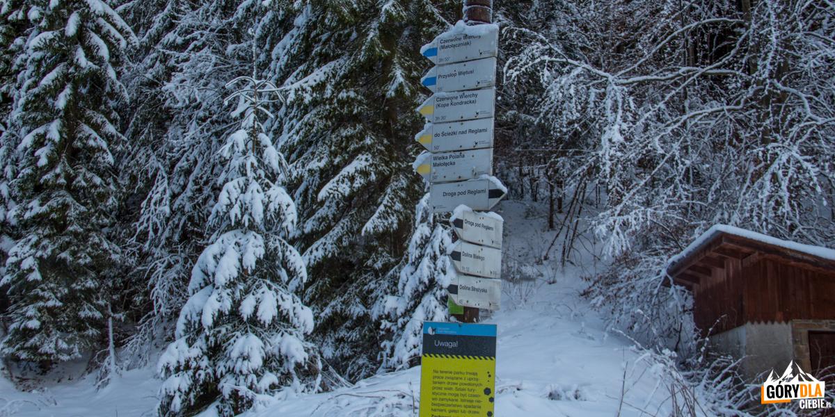 Drowskazy przed wejściem do Doliny Małej Łąki