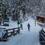 Kolejni biegacze przed wejściem do Doliny Małej Łąki