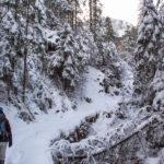 Zimowa Dolina Białego