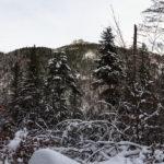 Sarnia Skała widziana ze ścieżki nad Doliną Białego