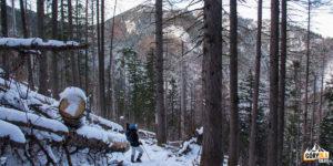 Ścieżka z Czerwonej Przełęczy do Doliny Strążyskiej