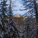 Jatki - turnie w grzbiecie Łysanek (1445 m)
