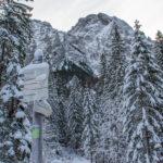 Rozwidlenie szlaków (do Siklawicy) w Dolinie Strążyskiej