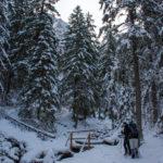 Ścieżka do Siklawicy w Dolinie Strążyskiej