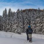 Polana Strążyska, droga na Przelęcz w Grzybowcu