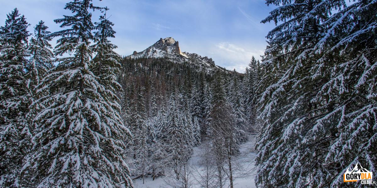 Sarnia Skała (1377 m) widziana zPolany Strążyskiej