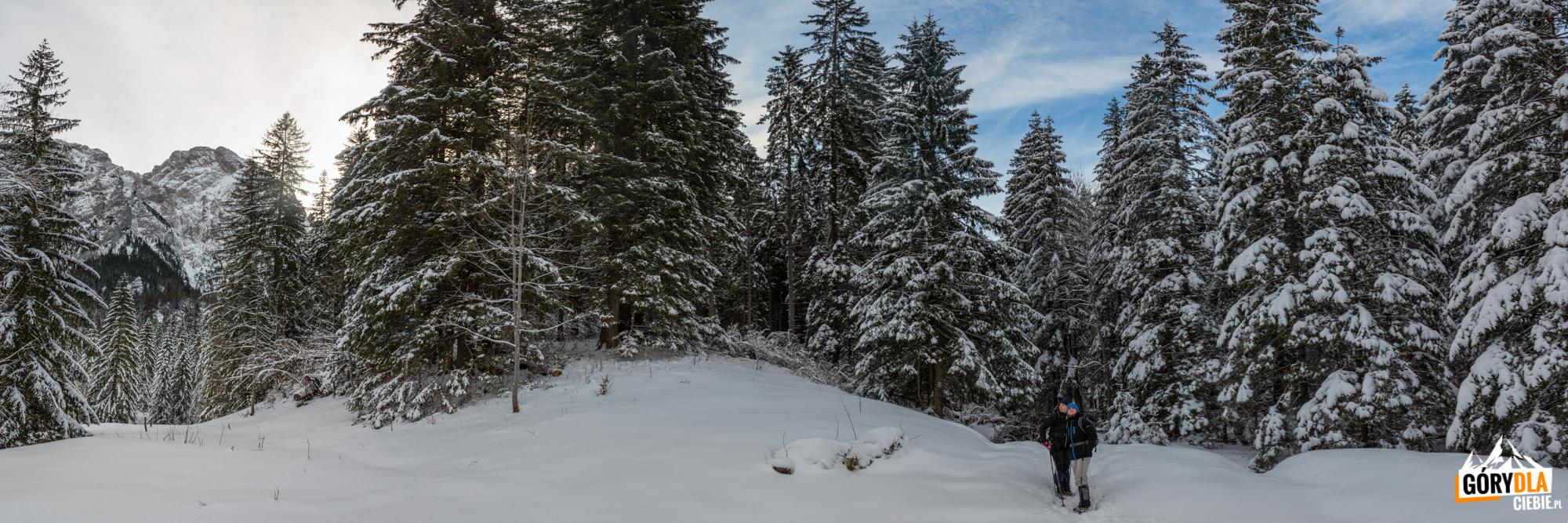 Polana Strążyska - widoki zdrogi naPrzełęcz wGrzybowcu