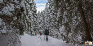 Poejście z Doliny Strążyskiej na Przełęcz w Grzybowcu