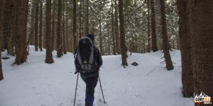 Wejście na Przełęcz w Grzybowcu