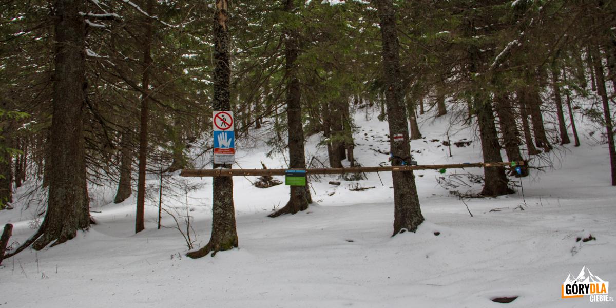 Czerwony szlak z Przełęczy w Grzybowcu na WWyżnią Kondracką Przełęcz i dalej Giewont (zamknięta od 1 grudnia do 15 maja)