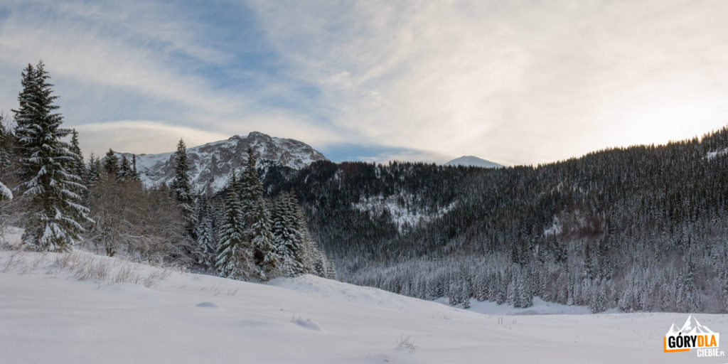 Widok z Rówienek na Wielką Polanę w Dolinie Małej Łąki