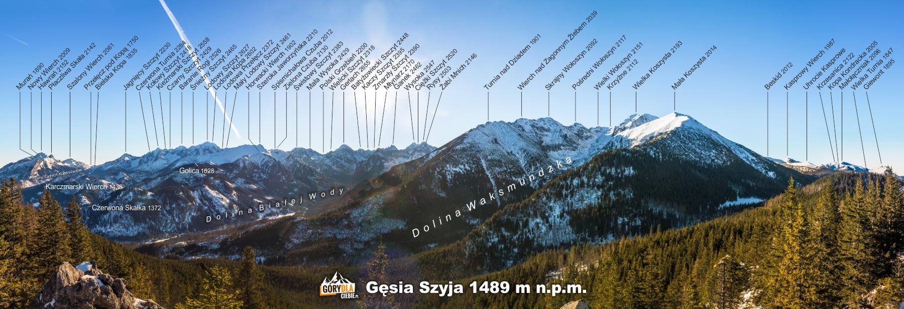Panorama Tatr z Gęsiej Szyi (1489 m)