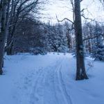 Podejście granią (niebieski szlak z Polany Krawcowej) na Jałowiec