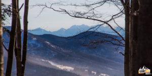 Droga z Jałowca (1111 m) na Przełęcz Opaczne - widok na Tatry