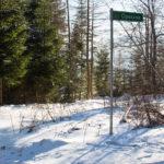Droga na Przełęcz Kolędówki, w dół do Zawoi