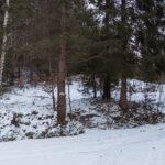Stryszawa Roztoki - zakręt szalku nad wodospadem