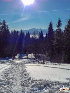 Widok na Tatry z podejścia na Luba