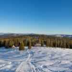 Panorama Rusinowej Polany