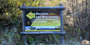 Droga na Bacówkę nad Wierchomlą