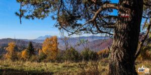 Tatry widoczne z podejścia na Pustą Wielką (1061 m)