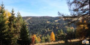 """Trasy narciarskie """"Dwie Doliny"""" widziane z podejścia na Pustą Wielką (1061 m)"""