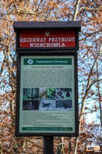 Rezerwat Przyrody Wierchomla
