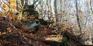 Wychodnia skalna na szczycie Pustej Wielkiej (1061 m)
