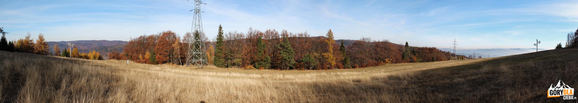 Widok z Jaworzynki (1001 m) na dwie doliny: Wierchomlę (po lewej) i Szczawnik (po prawej)