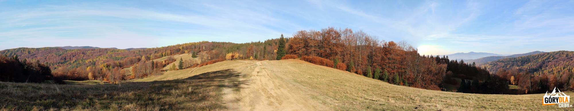 Drogo do Bacówki nad Wierchomlą