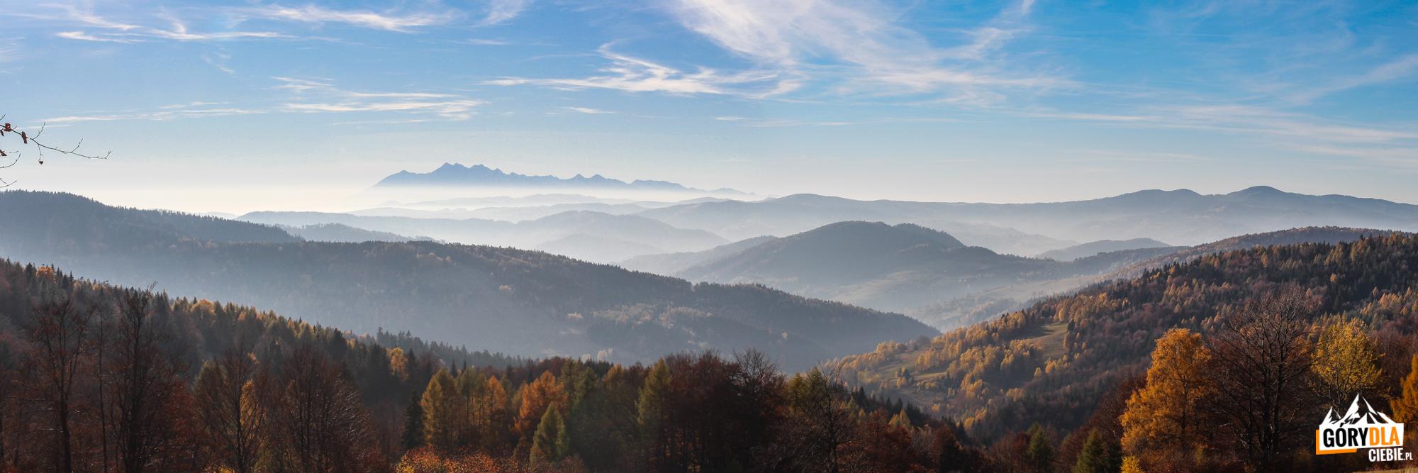 Panorama Tatr z Bacówki nad Wierchomlą (887 m)
