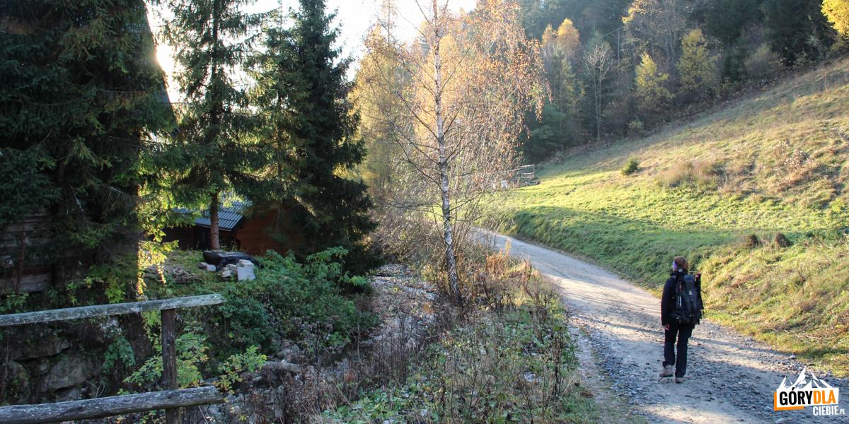 Zejście z Bacówki do Wierchomli Małej