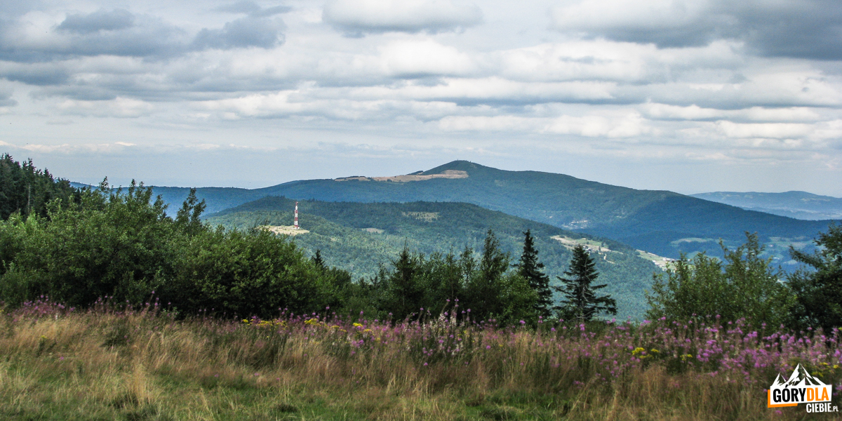 Widok zGorca Kamienickiego naMogielicę (1171 m) iKiczorę Kamienicką (1007 m) zmasztem przekaźnika