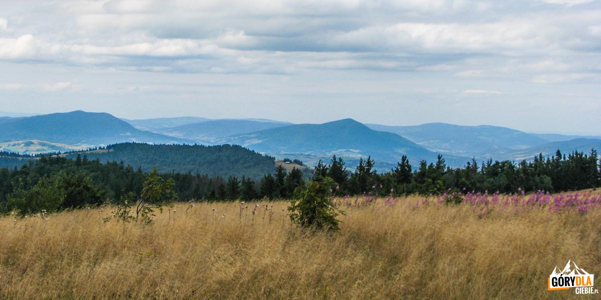 Widok zGorca Kamienickiego naLuboń Wielki (1022 m) iLubogoszcz (968 m)