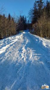 Rzeki - początek niebieskiego szlaku na Gorc (1228 m) -