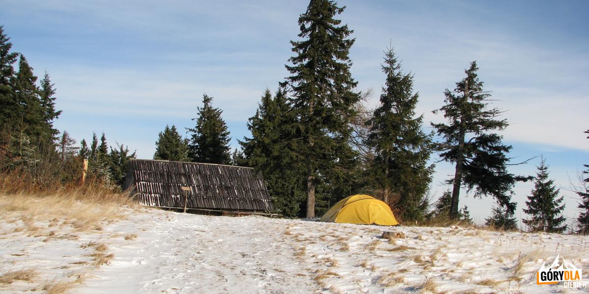 Namiot na polanie Gorc Kamienicki to nic dziwnego, ale zimą?