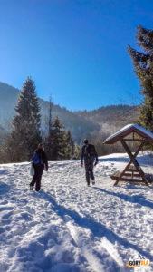 Nowa Polana - do niebieskiego szlaku na Gorc (1228 m) dołacza czarny ze Szczawy