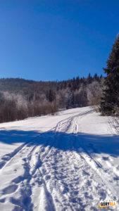 Nowa Polana w drodze na Gorc (1228 m)