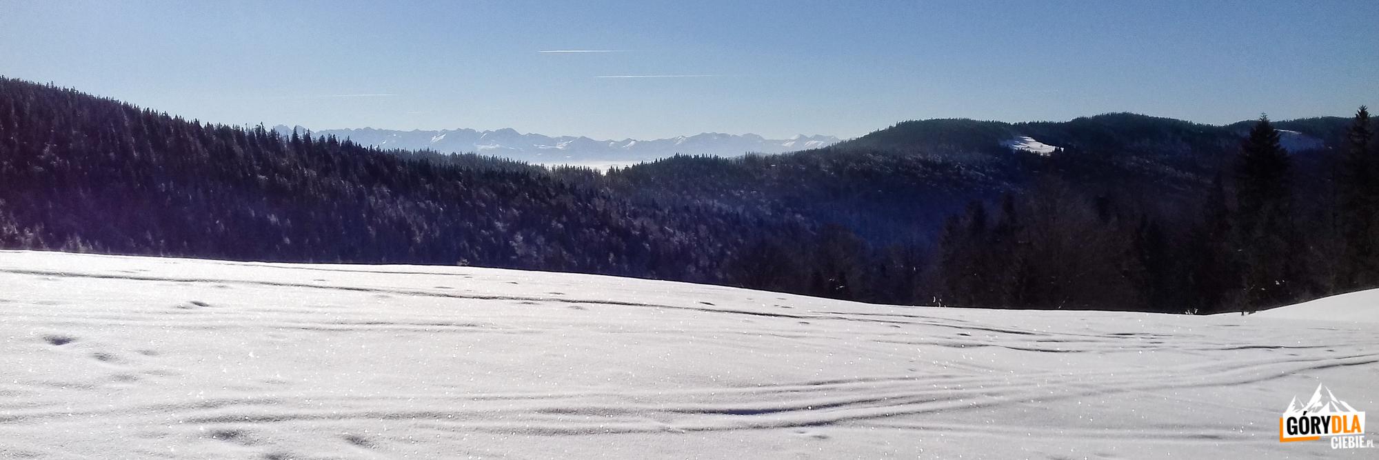 Zimowa panorama Tatr zpolany Świnkówka