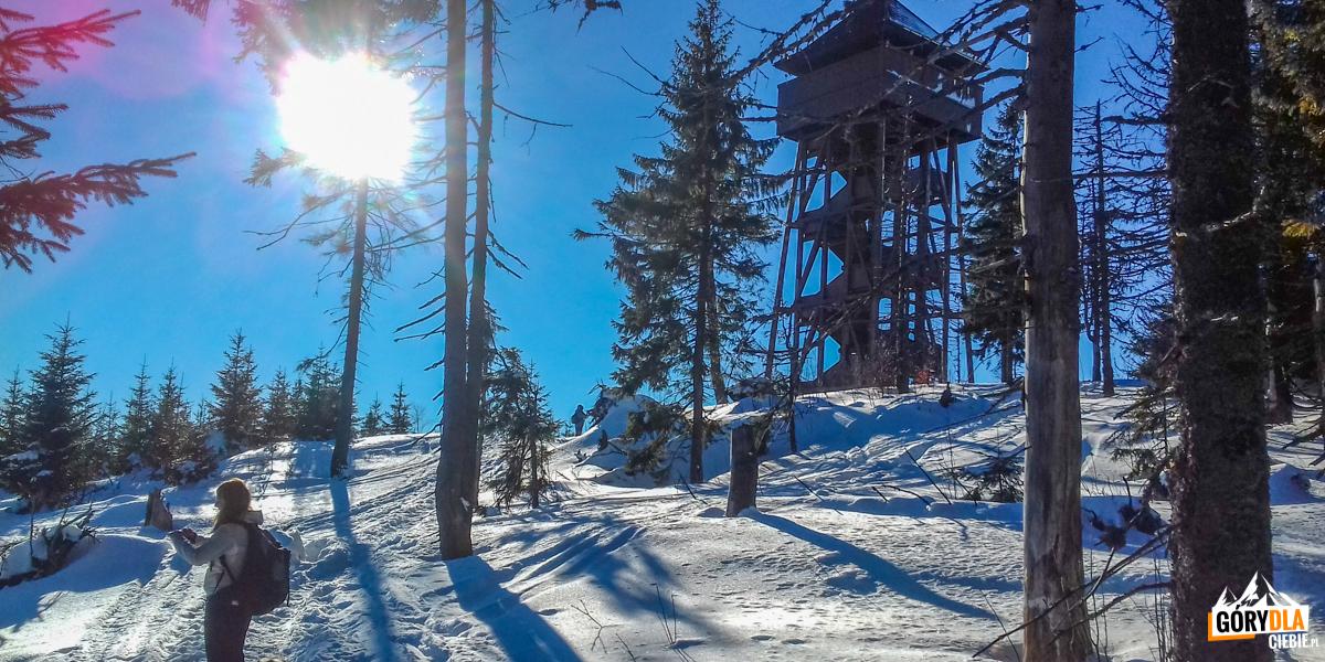 Wieża widokowa naszczycie Gorca (1228 m)